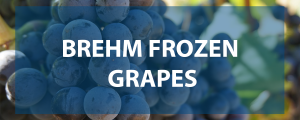 Brehm Frozen Grapes